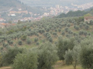 San Grignano